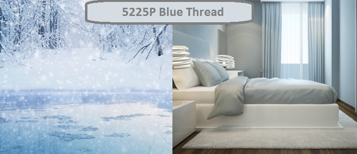 Blue Thread 5225P